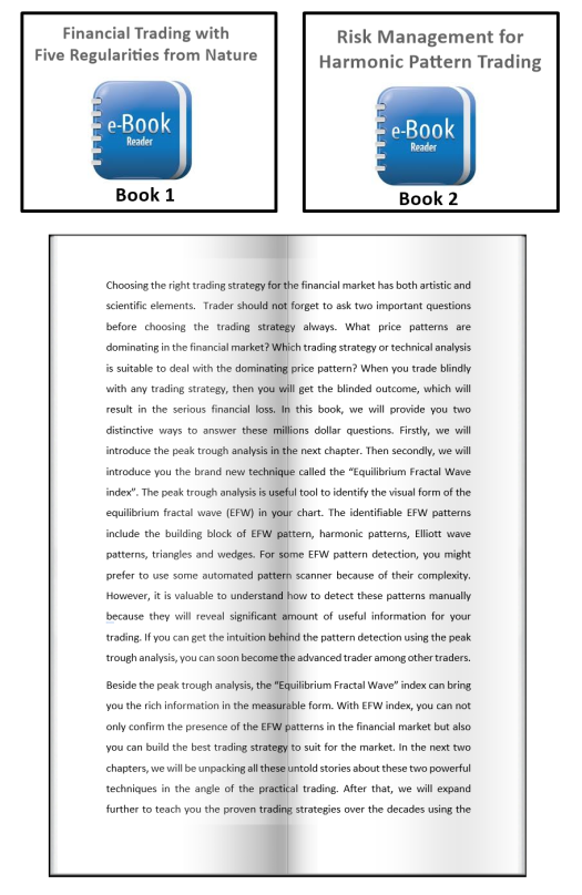 EBook-Icon-Risk-Management-for-Harmonic-Pattern-Trading example e6