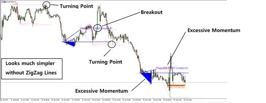 Excessive Momentum Trading